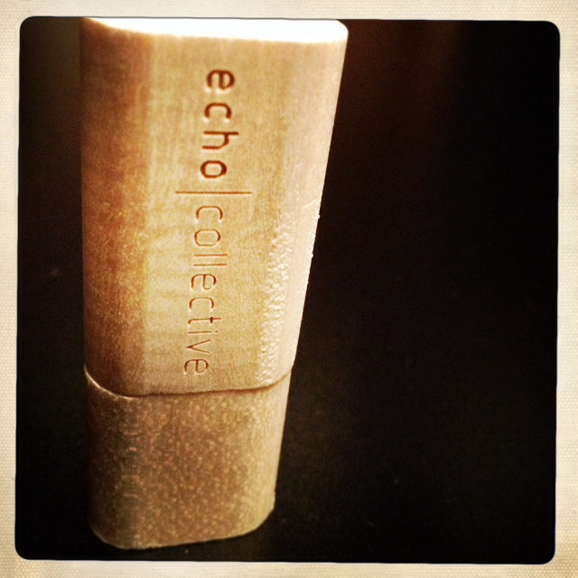 echoc collective logo usb